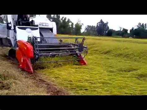 Mesin Pemotong Padi Yanmar cara matun padi dengan cepat doovi