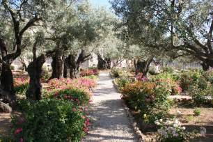 the garden of gethsemane by iluvrocket on deviantart
