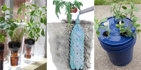 Water Planter by Learn How To Make Your Own Self Watering Planters With