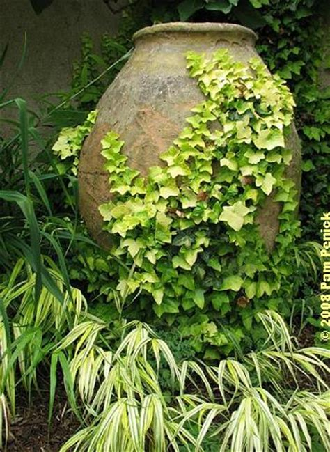 Pam Versus Is It A Of A Pot Calling The Kettle Black by A Visit To Chanticleer Hydrangeas House Garden Digging