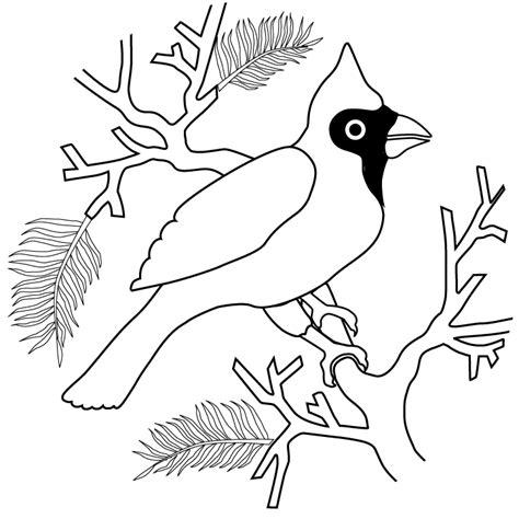 cardinal free colouring pages