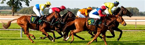 are show winnings taxed taxed from betting reclaim racing tax from