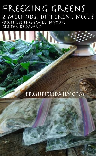 freeze greens spinach kale collards swiss chard