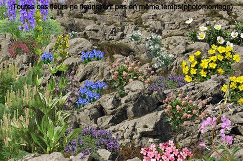 cr 233 er un jardin de montagne le jardin d altitude