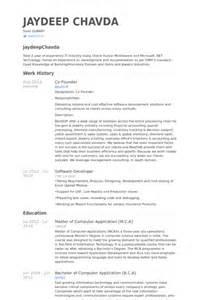 co founder resume sles visualcv resume sles database