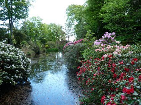 Aberdeen Gardens johnston gardens 12 aberdeen gardening