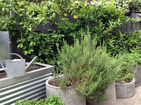 The Best Garden Designer In Australia Janna Schreier The Australian Fruit And Vegetable Garden