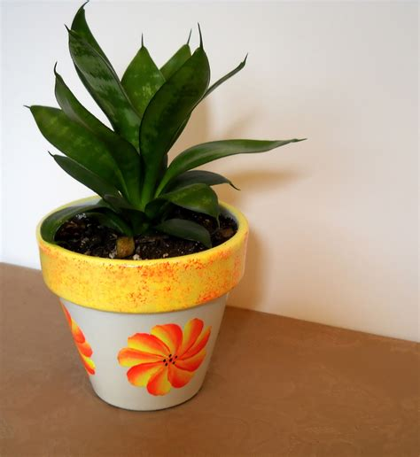 Plants In Planters by Potted Plant Free Stock Photo Domain Pictures