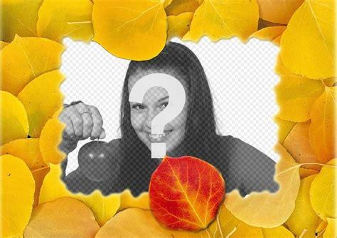 fotomontaggi cornici fotomontaggio di una cornice di foglie secche fotoeffetti