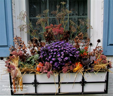fall flowers for window boxes window box our fairfield home garden