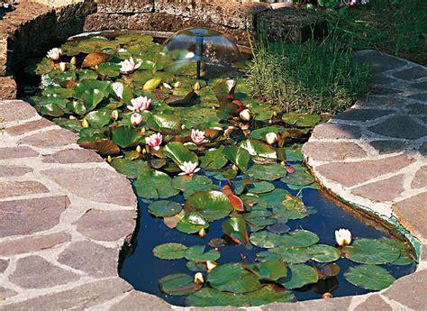 vasche da giardino per pesci laghetto ornamentale giardini d acqua sas