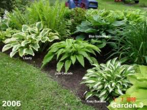 Hosta Garden Ideas Way To Lay Out Hostas Garden Ideas Gardens Of Earthly Delights