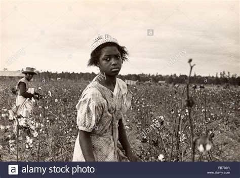 a black s journey from cotton picking to college professor lessons about race class and gender in america black studies and critical thinking books cotton pickers cotton picking america 1930 s stock