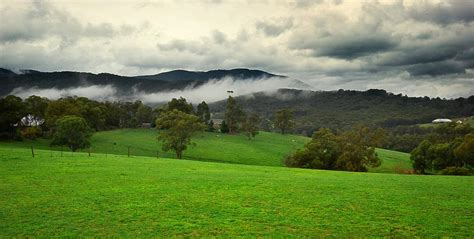Landscape Design Yarra Valley Redfish Bluefish Creative Graphic Design And Photography