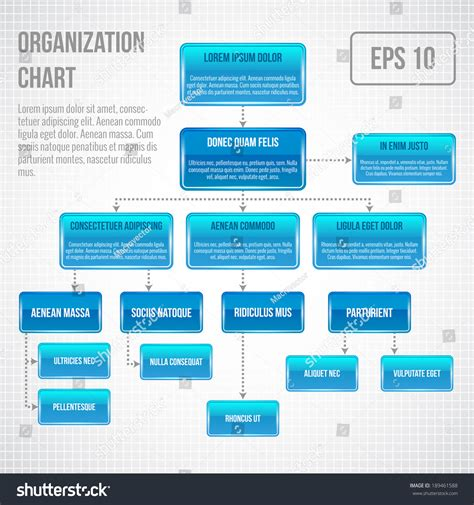 graphic hierarchy chart organizational chart infographic business structure