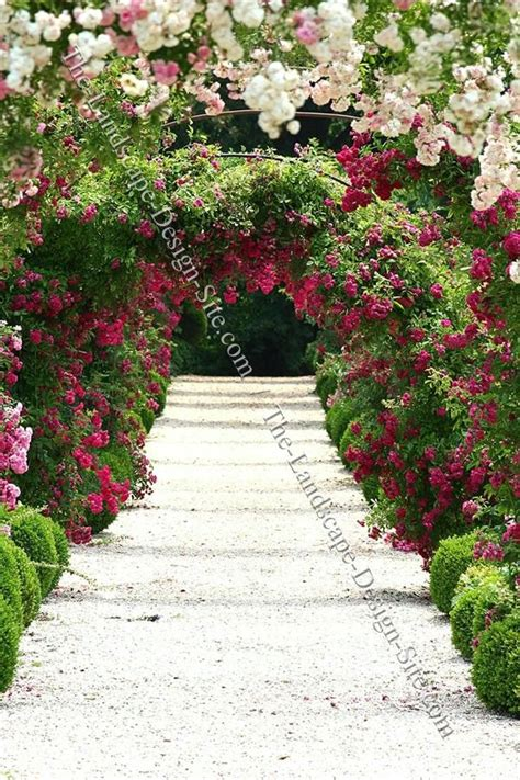 garden rose trellis plan gift ideas for her pinterest how to build a garden arbor with gate woodworking