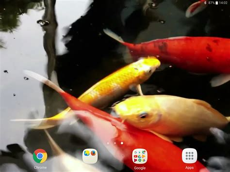 koi live wallpaper pro apk best of android koi live wallpaper apk kezanari