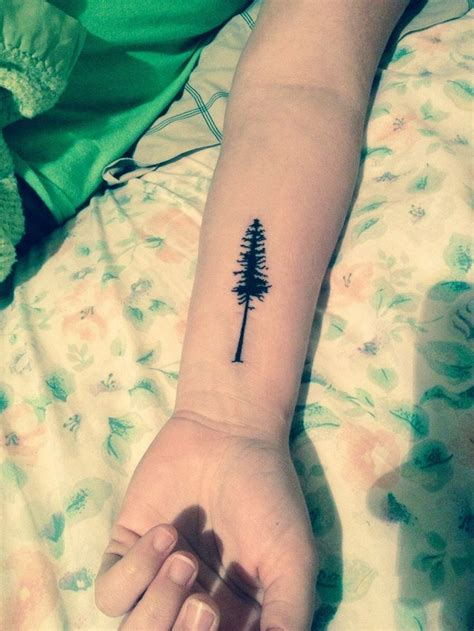 watercolor tattoo reddit 1000 ideas about redwood on tree