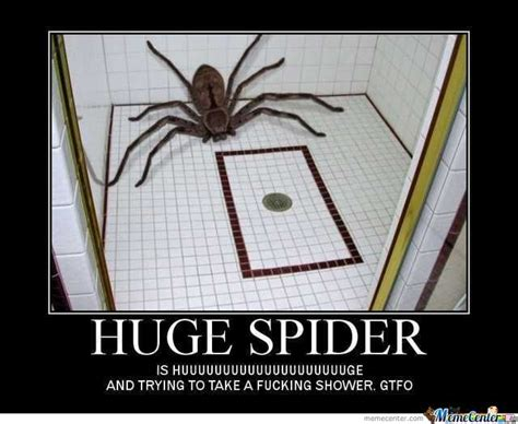 Spider In House Meme - huge spider by fbk meme center