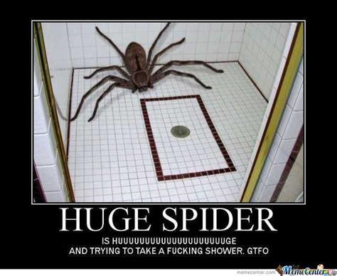 Shower Spider Meme - huge spider by fbk meme center