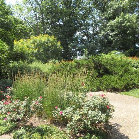 Botanical Gardens Illinois Luthy Botanical Garden Peoria Il Top Tips Before You Go Tripadvisor