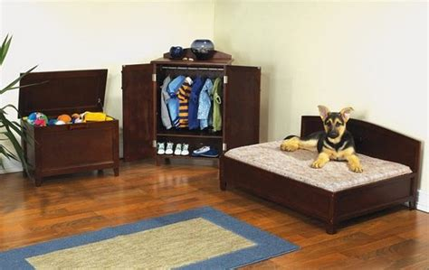 pet bedroom ideas turn a small closet into a dog bedroom diy projects for everyone