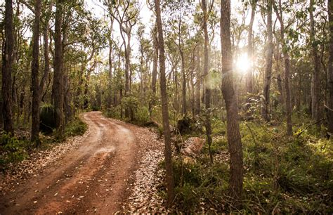 Health Detox Retreats Perth Wa by Forest Rise Chalets Lodge Margaret River Accommodation