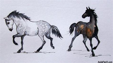 imagenes a blanco y negro de caballos como dibujar un caballo tutorial taringa