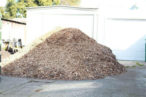 this is what 10 cubic yards of mulch looks like