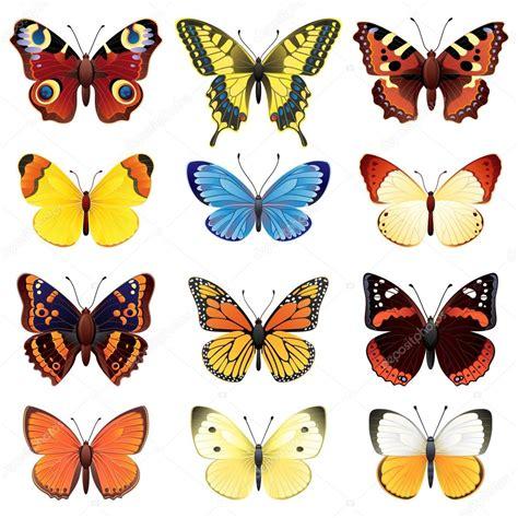 Butterfly Set butterfly set stock vector 169 jut 13 2010447