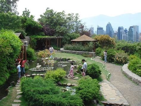 imagenes de jardines japon parques y jardines japoneses en chile discover nikkei