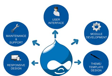 drupal template development drupal web development toronto web design web design