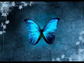Download free 250 high quality butterfly wallpaper the quotes land