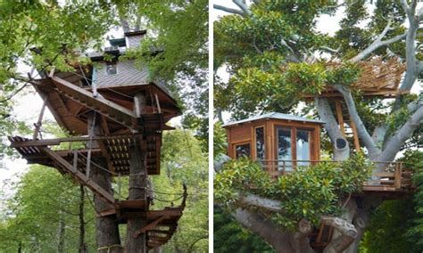 downloadable tree house plans apartment therapy tree house design and construction 28 images