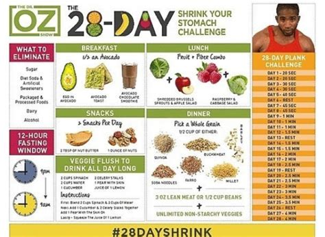 printable recipes from today show 28 day shrink your stomach challenge from the dr oz show