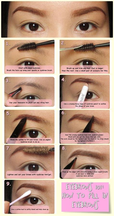 how to color eyebrows 144 best eyebrows images on makeup