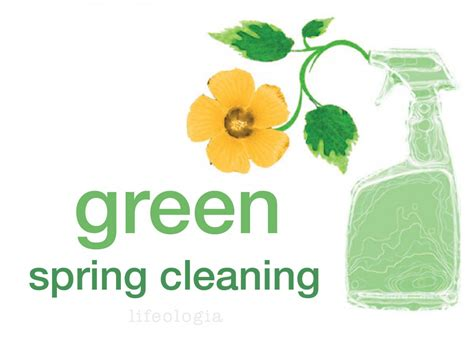 choosing greener spring cleaners gogreennation org
