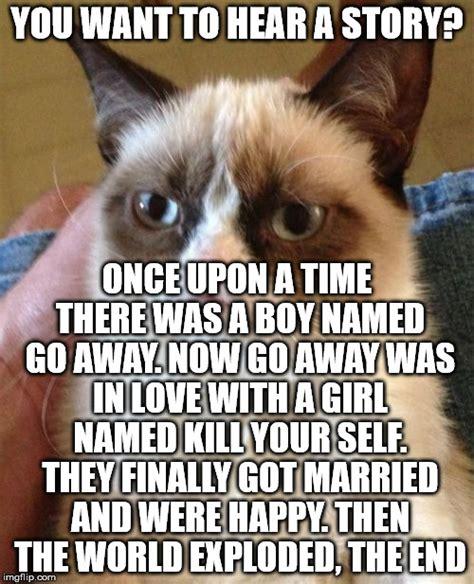 Cat Story grumpy cat story time imgflip