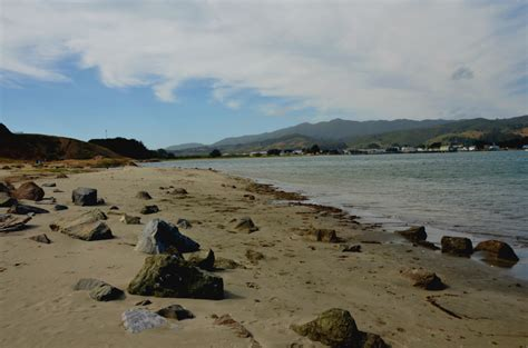 friendly hikes bay area friendly beaches in bay area find a friendly near you