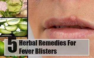 fever blister home remedy fever blisters herbal remedies treatments cure