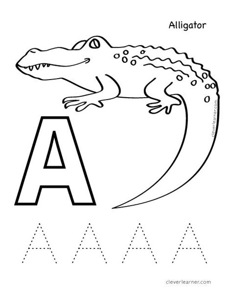 alligator coloring pages preschool a is for alligator letter a sound and coloring sheet
