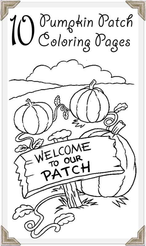 pumpkin themed coloring pages 25 best ideas about pumpkin patches on pinterest