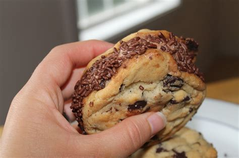 life  food chocolate chip cookie ice cream sandwiches