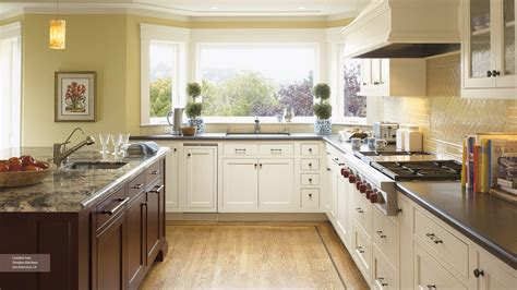 kitchens with off white cabinets off white kitchen cabinets ideas the decoras jchansdesigns
