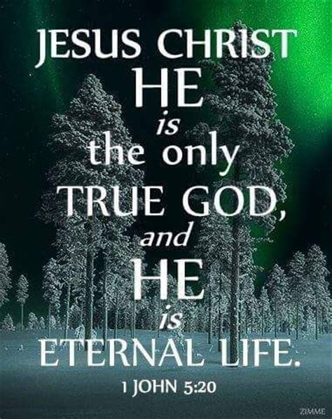 his true and unveiled a personal search and perspective books 1000 ideas about god jesus on jesus