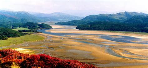 Selves - the mawddach estuary home page