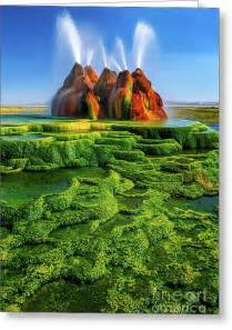 Width Of Shower Curtain Green Fly Geyser Photograph By Inge Johnsson