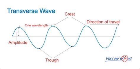 labelled diagram of a transverse wave wave diagram to print diagram site