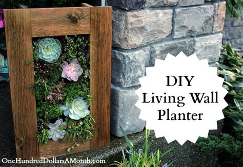 Succulent Living Wall Planter by Living Wall Planter Home Decorating Ideas