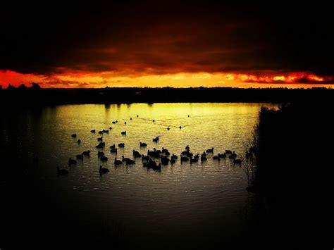 you seen a sunset before books fondo de pantalla imagenes hd 1080 taringa